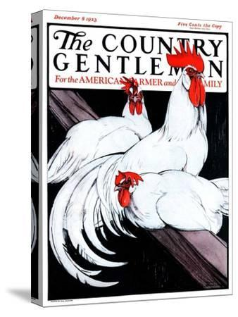 """Roosting Rooster and Hens,"" Country Gentleman Cover, December 8, 1923"