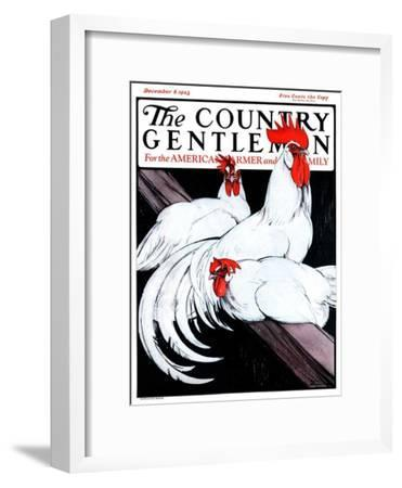 """""""Roosting Rooster and Hens,"""" Country Gentleman Cover, December 8, 1923"""