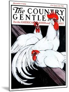 """""""Roosting Rooster and Hens,"""" Country Gentleman Cover, December 8, 1923 by Paul Bransom"""