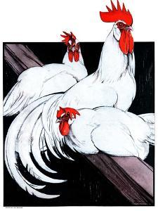 """Roosting Rooster and Hens,""December 8, 1923 by Paul Bransom"