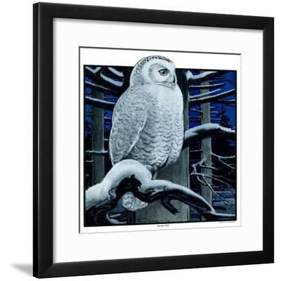 """""""Snowy Owl in Forest at Night,""""January 12, 1924"""