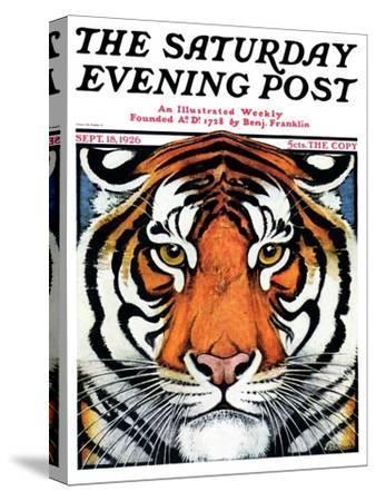 """Tiger Head,"" Saturday Evening Post Cover, September 18, 1926"
