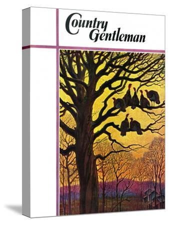 """""""Wild Turkeys Roosting,"""" Country Gentleman Cover, November 1, 1938"""