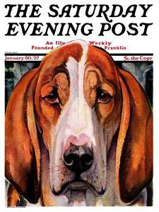"""You Ain't Nothing But a Hounddog,"" Saturday Evening Post Cover, January 30, 1937 by Paul Bransom"