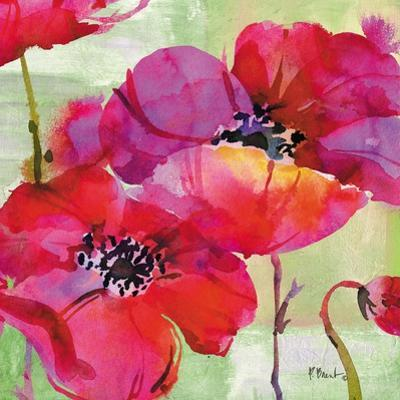 Amalfi Poppies