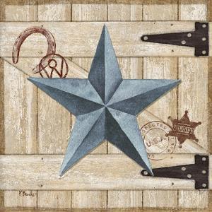 Barn Star II by Paul Brent