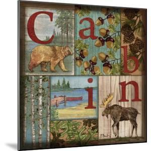 C is for Cabin by Paul Brent