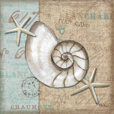 Linen Shells III by Paul Brent