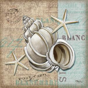 Linen Shells IV by Paul Brent