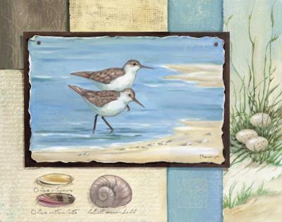 Sandpiper Collage I