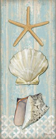 Spa Shells Vertical II by Paul Brent