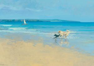 Summer Sands by Paul Brown