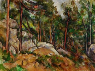 The Rocks in the Park of the Chateau Noir, 1898-1899 by Paul C?zanne