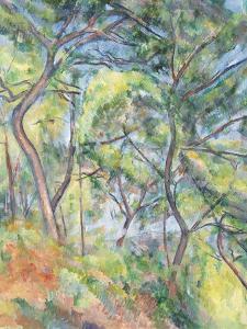 Sous-Bois, c.1894 by Paul Cezanne
