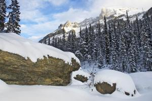 The Alberta Rocky Mountains by Paul Colangelo