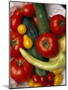 Basket of Various Tomatoes, Squash and a Cucumber and a Pepper by Paul Damien