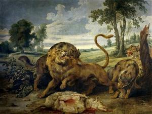 A Lion and Three Wolves by Paul de Vos
