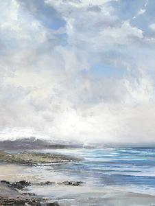 Calm Coast by Paul Duncan