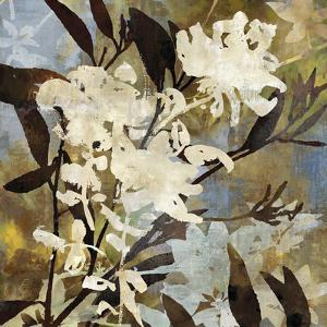 Floral Eclipse I by Paul Duncan