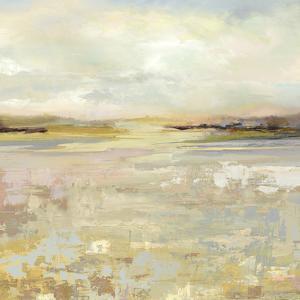 Glaslyn - Detail by Paul Duncan