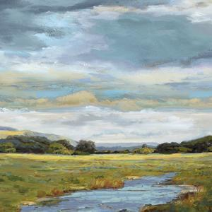 Itchen - Detail by Paul Duncan