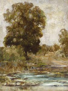 Wood Creek by Paul Duncan