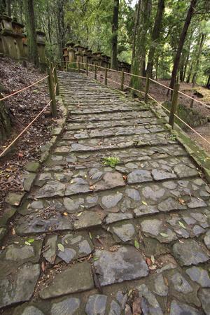 A Cobble Stone Path Leading Through the Grounds of Kasuga Taisha Shrine in Nara, Japan