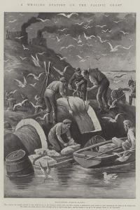 A Whaling Station on the Pacific Coast by Paul Frenzeny