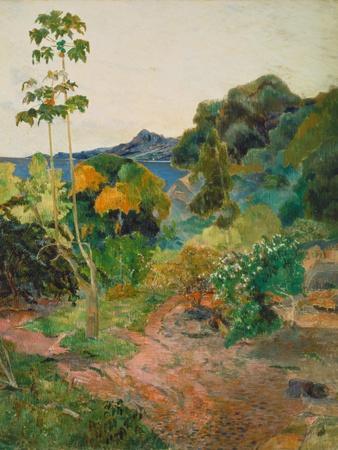 Martinique Landscape (Tropical Vegetation), 1887