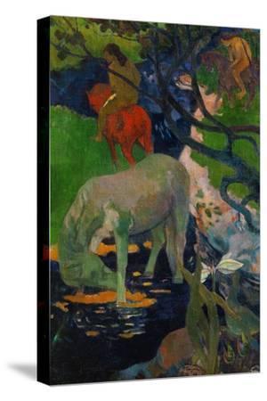 White Horse, 1898