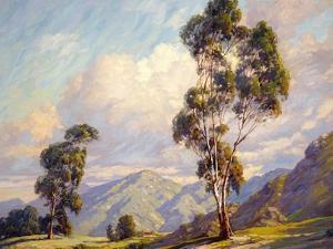 Eucalyptus by Paul Grimm
