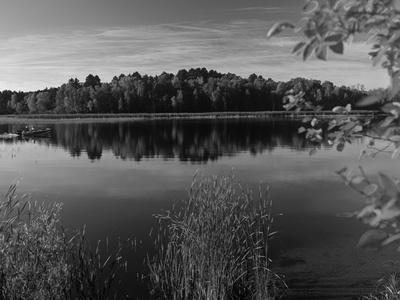 Minnesota, Lake Winnibigoshish, Chippewa National Forest, Northern Minnesota, USA
