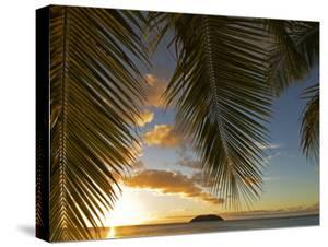 South Pacific, Fiji, Kadavu, Sunset Through Plams from the Beach on Dravuni Island by Paul Harris