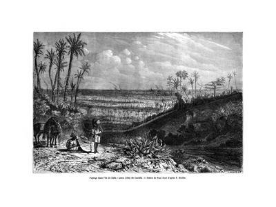 Landscape in the Island of Cuba, 1859