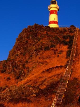 Cape Palliser Lighthouse and Staircase, Wairarapa, Wellington, New Zealand