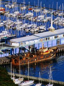 Chaeffers Marina at Oriental Bay, Wellington, Wellington, New Zealand by Paul Kennedy