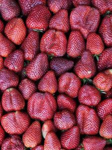 Fresh Strawberries for Sale, Vega Central De Santiago by Paul Kennedy