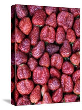 Fresh Strawberries for Sale, Vega Central De Santiago