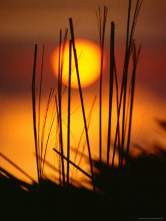 Sunset Silhouette of Bungalow Roof, Pulau Nias, North Sumatra, Indonesia