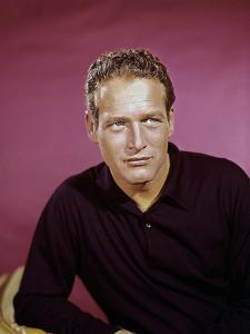 PAUL NEWMAN early 60'S (photo)