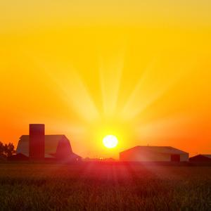 Brilliant Orange Sunrise over a Corn Field in Iowa, and Barn with a Bright Yellow Sun on a Cool Fal by Paul Orr
