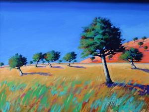 Almond Trees by Paul Powis