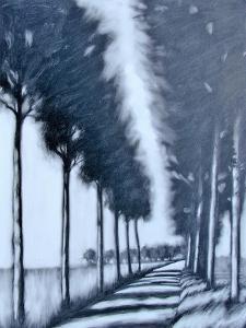 Avenue by Paul Powis