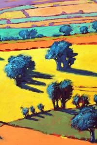 Cotswold Way close up 2 by Paul Powis