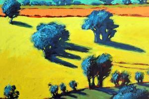 Cotswold Way close up 3 by Paul Powis
