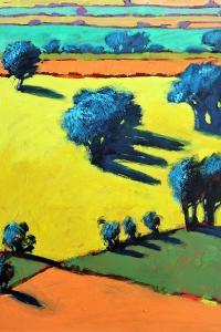Cotswold Way close up 4 by Paul Powis