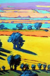 Cotswold Way close up 6 by Paul Powis