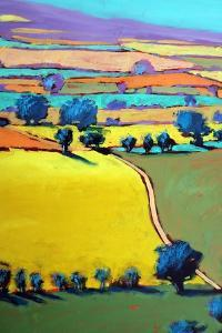 Cotswold Way close up 7 by Paul Powis