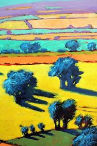 Cotswold Way close up 8 by Paul Powis