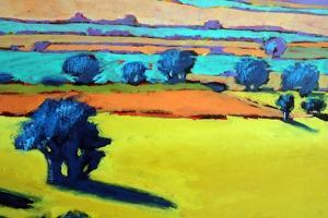 Cotswold Way close up 9 by Paul Powis